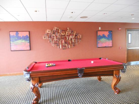 بوشكيل إن آند كونفرانس سنتر: Pool table in lounge area 