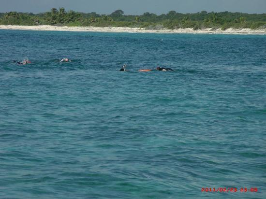 Sandos Playacar Beach Resort: Snorkeling/Fishing Trip