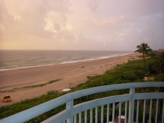 Hilton Singer Island Oceanfront/Palm Beaches Resort: Beach View South