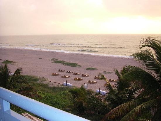 Hilton Singer Island Oceanfront/Palm Beaches Resort: Beach View North