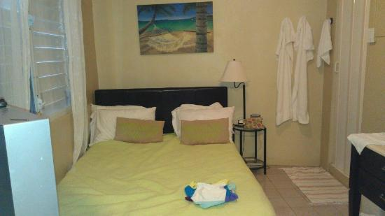 Coqui del Mar Guest House: Living area with tv, bed, sink, ac.
