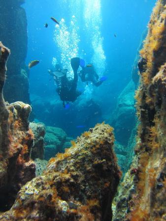 GoDive Mykonos PADI Diving Resort: Kalafakiona reef