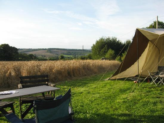 Manor Court Farm: view from the campsite