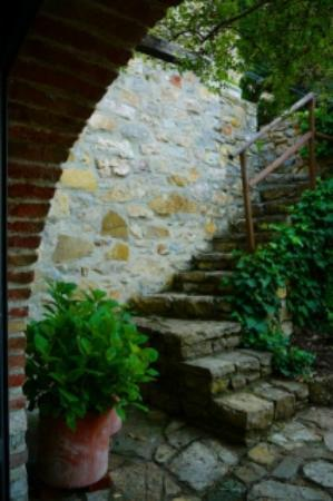 "B&B Fagiolari: Steps leading from our room (""G"") up to main building"