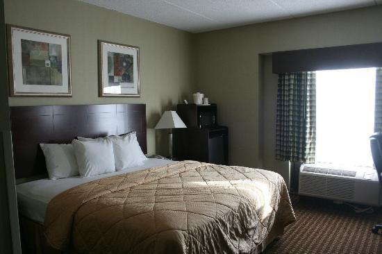 Comfort Inn Rochester Monroe Avenue: Large comfortable room