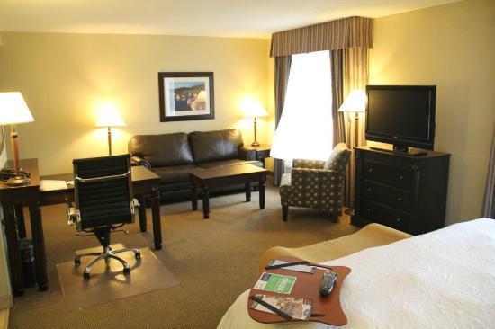 Hampton Inn & Suites by Hilton Moncton : King Studio Suite - Big Desk