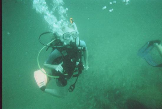 Diving Offshore Panama City Beach, Fl