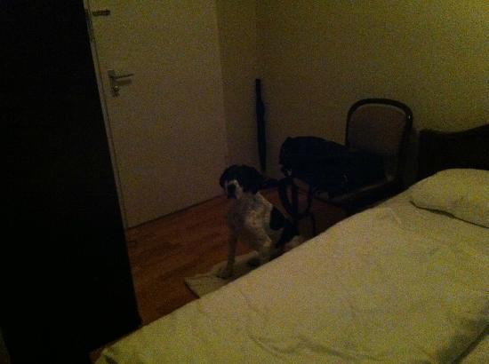 Basic-Hotel Ostseehalle: Als Nachtisch ein Stuhl ohne Lampe o.ä.