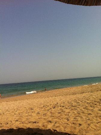 Miramar Al Aqah Beach Resort: View from the sunbed