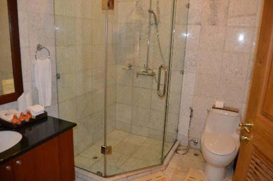 Aureum Resort at Governor's House: baño