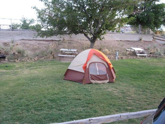 Las Cruces KOA: our tent site