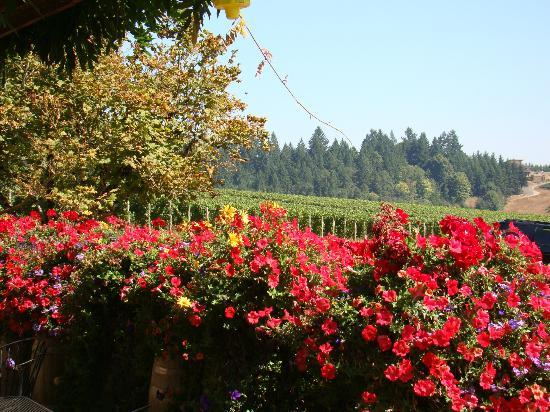 Lobenhaus Bed & Breakfast & Vineyard: Wine and Roses