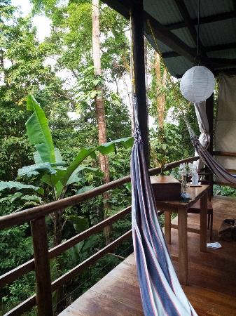 La Loma Jungle Lodge and Chocolate Farm: Hammocks