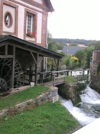 Maison du Dr Vassaux : la natura nei dintorni