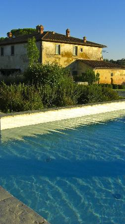 Cortona Resort - Le Terre dei Cavalieri: One view from the pool