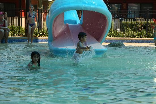 Cairns Coconut Holiday Resort: sun Lagoon pool