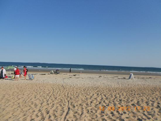 Normandie Oceanfront Motor Inn: view of beach.