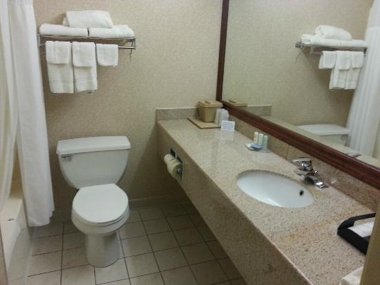 Quality Inn Woodstock: Clean - up to date bathroom