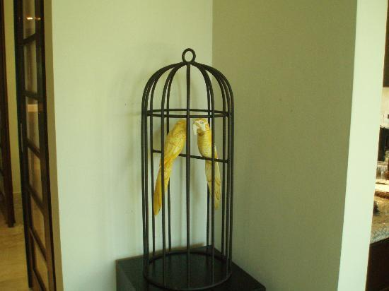 Paradisus Punta Cana Resort: Cage with Fake birds, kind of cute