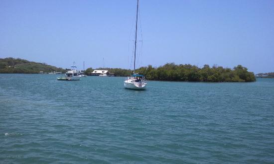 Phosphorescent Bay (Bahia Fosforescente): Esto es vida!