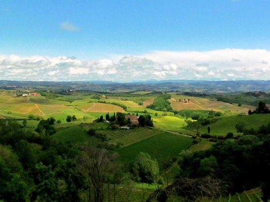 Tuscany on a Budget - Day Tours: View from the farm's terrace, where we had lunch!