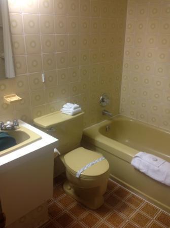 Salle de bain vert-pomme-foncé - Picture of Hotel Sept-Iles, Sept ...