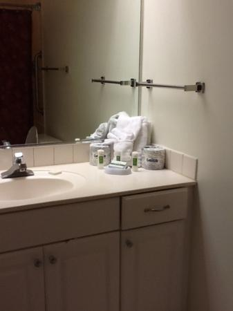 Marriott's Manor Club at Ford's Colony: Bathroom was kinda small and the only mirror in the room was in the bathroom so that made it kin