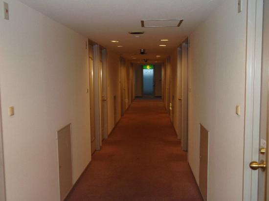 Shin-Osaka Sun Plaza Hotel: 廊下