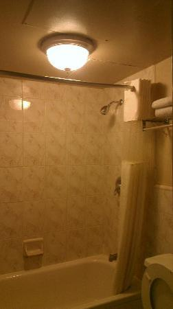 Ashlan Inn: Falling ceiling in the shower.