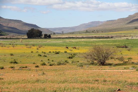 Enjo Nature Farm: the Biedouw valley