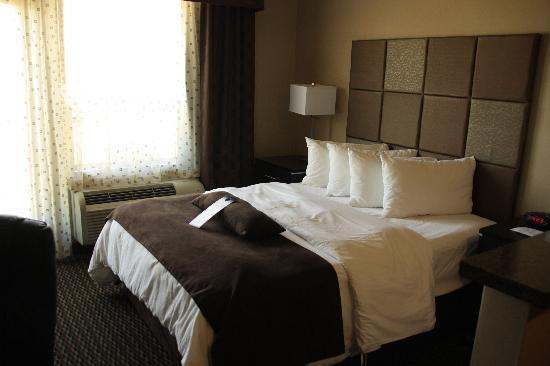 BEST WESTERN PLUS Wine Country Hotel & Suites: Bed