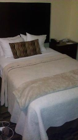 Hotel 140: Queen bed, this is almost all there is to the room, but it certainly does the job comfortably!