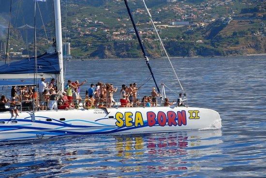 Catamaran sea born