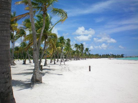 Sanctuary Cap Cana by Playa Hotels & Resorts: Playa Juanillo