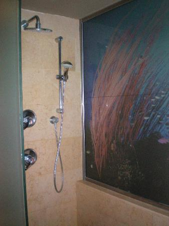 Catalonia Royal Bavaro : Our shower with 2 shower heads and the cute Reef Glass