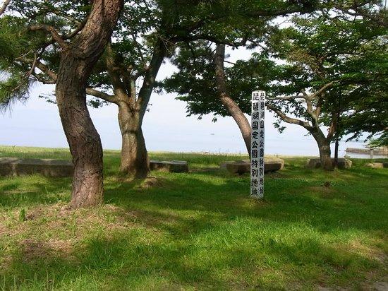 Ho Park