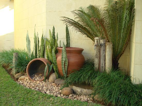 The Lazy Lizard: Garden area