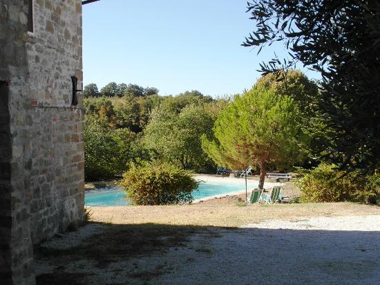 Agriturismo Valdichiascio : Pool