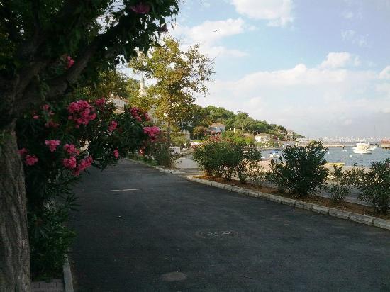 Burgazada 사진
