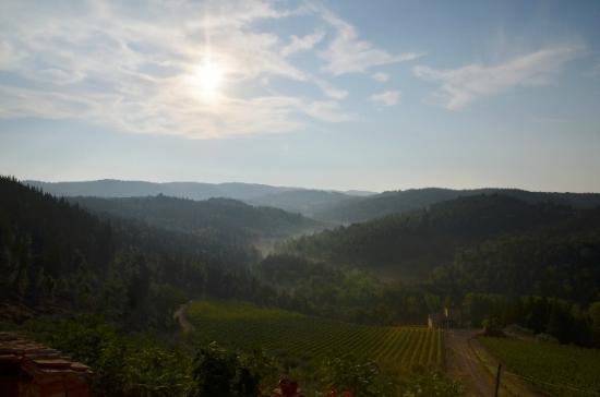 Agriturismo Castello della Paneretta: Mattino