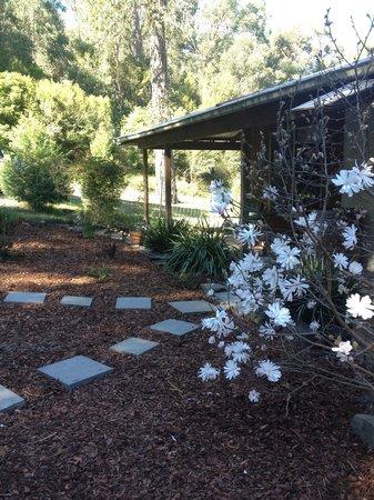 Woodbox Retreat & Studio : peaceful location