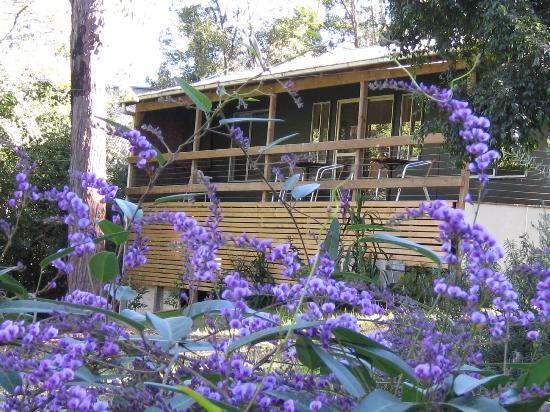 Woodbox Retreat & Studio : woodbox studio
