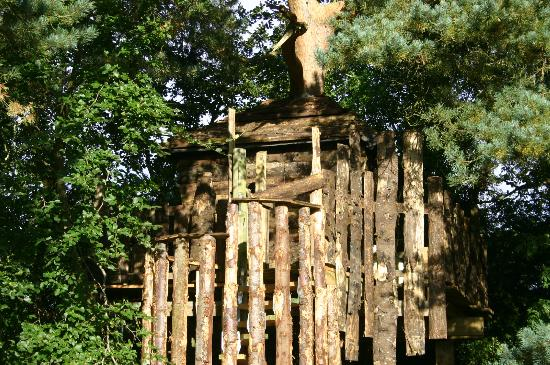 Fermanagh Self Catering: The tree house: romantic at sunset or a good centrepoint for waterfight or camp fire?