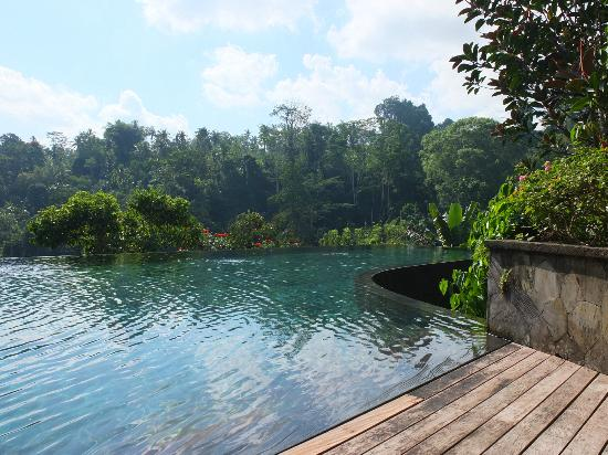 Hanging Gardens of Bali: The pool