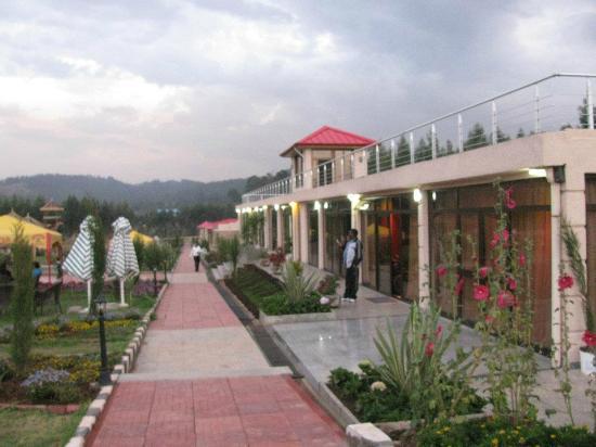 Yaya Village: Hotel and grounds