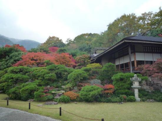 Okochi Sanso Garden: 11月中旬のお庭です。