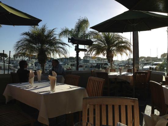 Roy Restaurant Waterfront San Diego