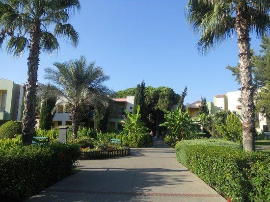 Hotel Riu Kaya Belek: Gardens