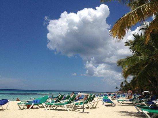 Viva Wyndham Dominicus Beach: Per il mare e la spiaggia...beh...un incanto!