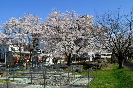 Suwa City Kohan Park: 足湯付近